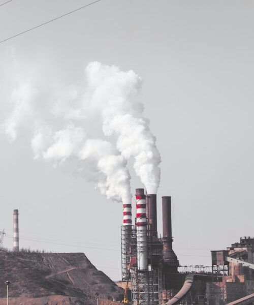 9 Best Ways to Reduce Air Pollution