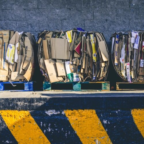 How Improper Waste Disposal Affects the Environment